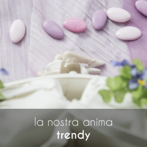 anima_trendy_cover